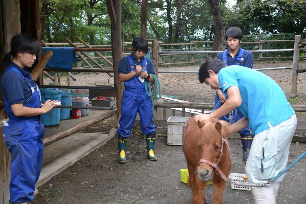 群馬サファリパーク宿泊実習☆エコ・コミュニケーション科動物園・動物飼育専攻
