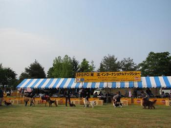 FCI東北インターナショナルドッグショー