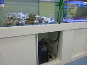 濾過槽メンテナンス