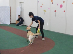 We are SCA 卒業進級展2014~エコ・コミュニケーション科編~