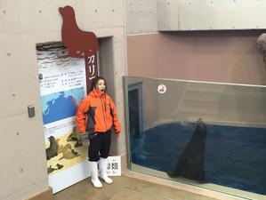 夢を叶えた卒業生の活躍〜男鹿水族館〜