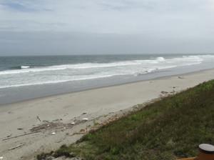 浜辺を綺麗に☆ビーチクリーニング